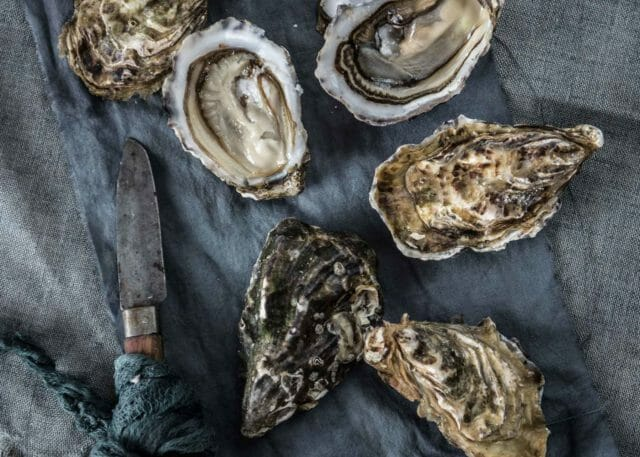 oysters and knife on grey textile