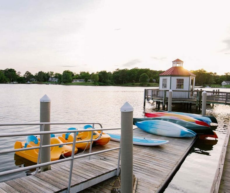 assorted-color kayaks on wooden dock